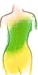 femaleform