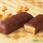 Bari Life Peanut Butter Protein Bar